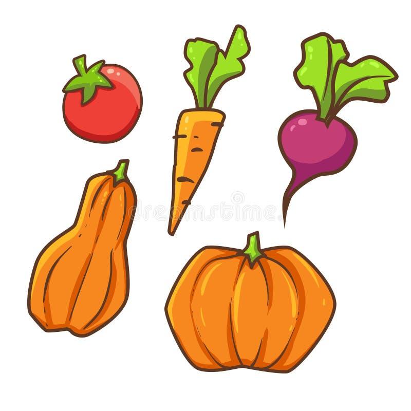 Ejemplo del vector de la colección de verdura libre illustration