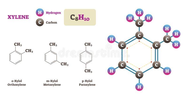 Ejemplo del vector de la molécula del xileno Diagrama de la estructura del hidrógeno y del carbono libre illustration