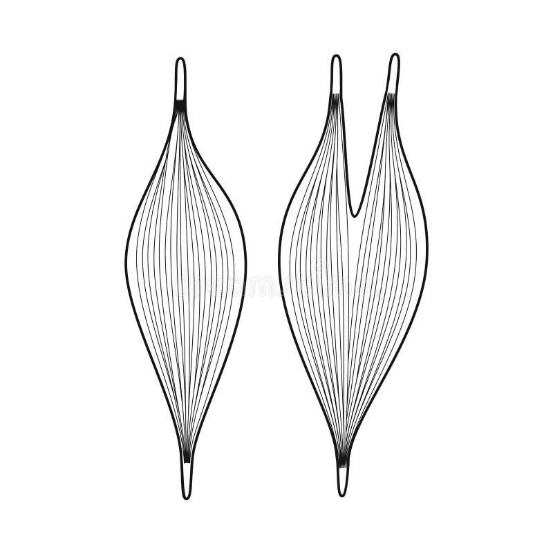Ejemplo del vector de la muestra de la anatomía y del órgano Fije de la anatomía y del símbolo común médico para la web libre illustration