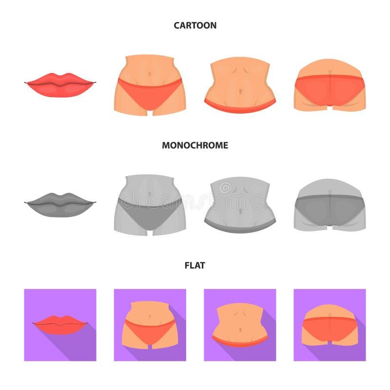 Ejemplo del vector de la muestra del cuerpo y de la parte Colección de ejemplo común del vector del cuerpo y de la anatomía libre illustration