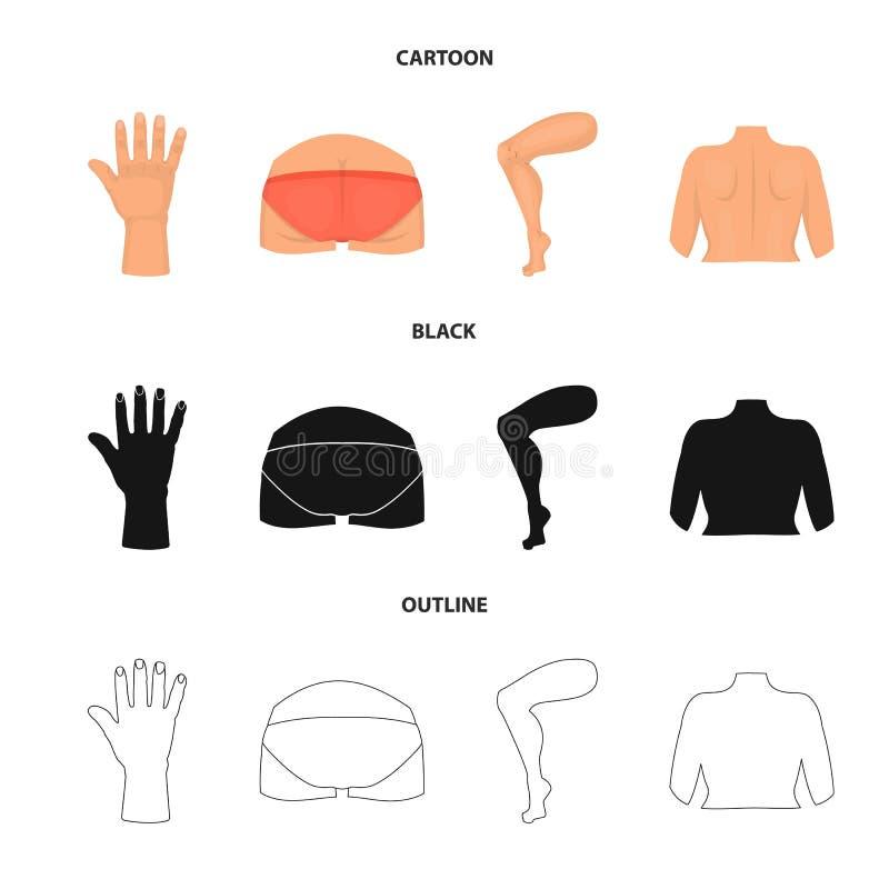 Ejemplo del vector de la muestra del cuerpo y de la parte Colección de icono del vector del cuerpo y de la anatomía para la acció ilustración del vector