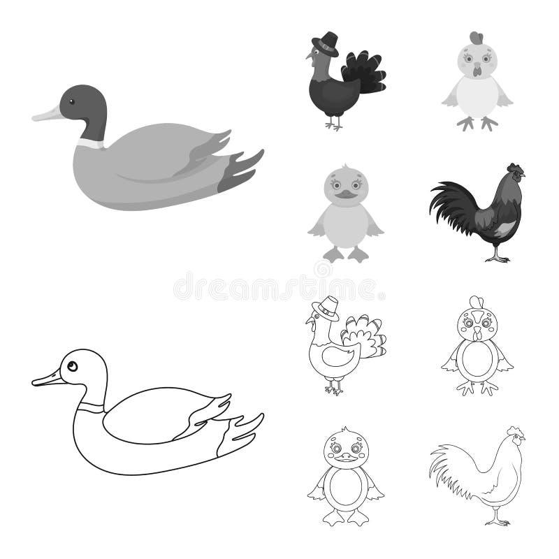 Ejemplo del vector de la muestra divertida y de las aves de corral Colecci?n de divertido y de s?mbolo com?n de cultivo para la w stock de ilustración