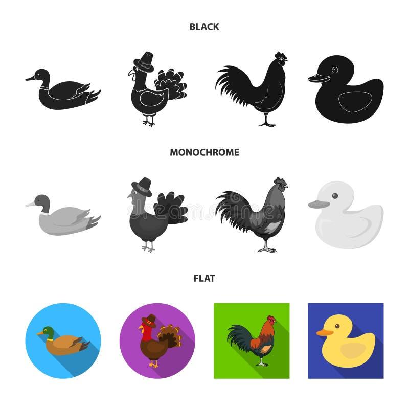 Ejemplo del vector de la muestra divertida y de las aves de corral Colecci?n de icono divertido y agr?cola del vector para la acc libre illustration