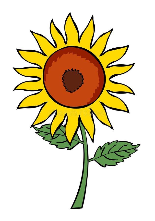 Ejemplo del vector de la planta de la flor de Sun Flor de la historieta libre illustration