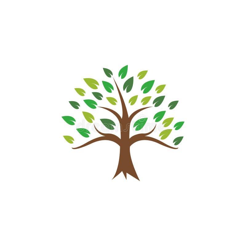 Ejemplo del vector de la plantilla del diseño del icono del árbol fotografía de archivo
