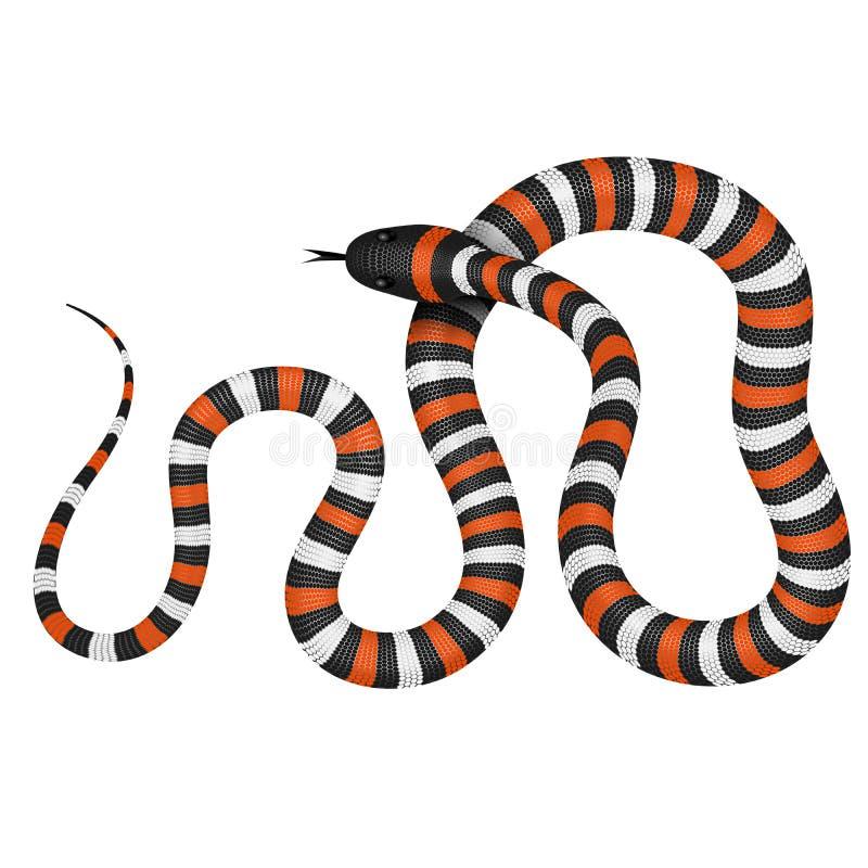 Ejemplo del vector de la serpiente coralina stock de ilustración