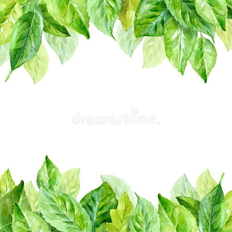 Ejemplo del vector de las hojas de la primavera Fondo de la acuarela ilustración del vector