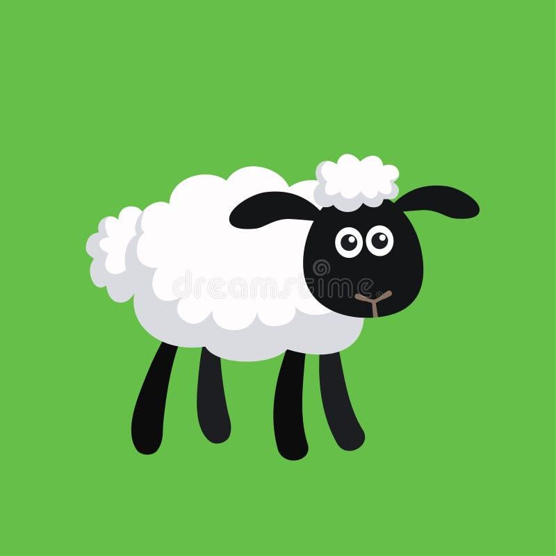 Ejemplo del vector de las ovejas derechas de la historieta ilustración del vector