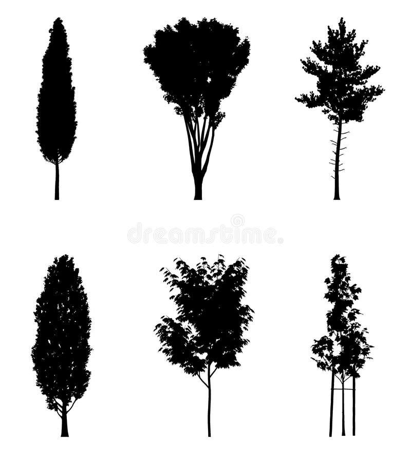 Ejemplo del vector de las siluetas del árbol ilustración del vector