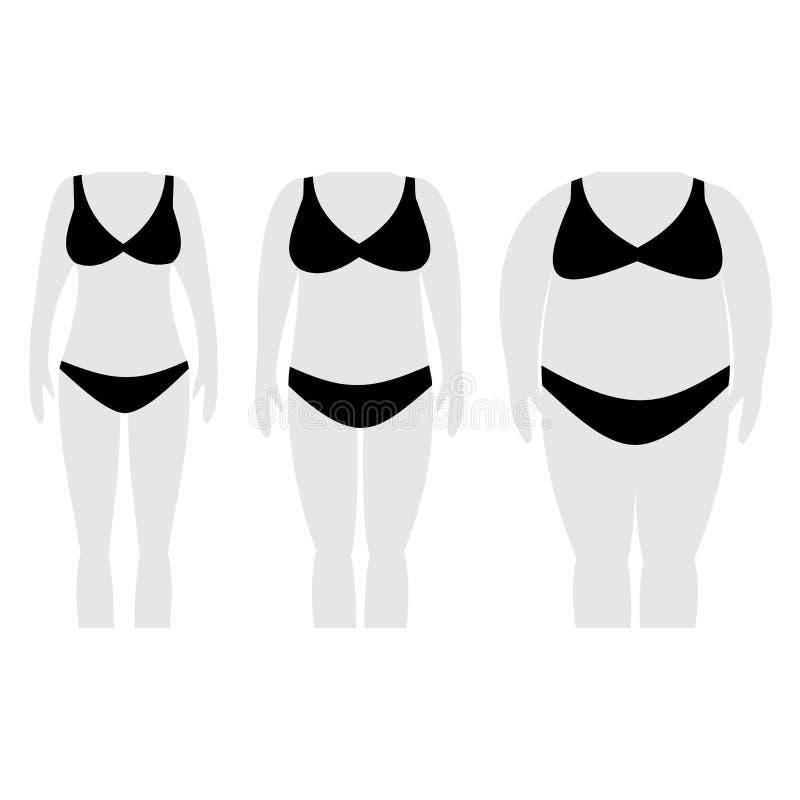 Ejemplo del vector de las siluetas de la mujer con la piel ligera ilustración del vector