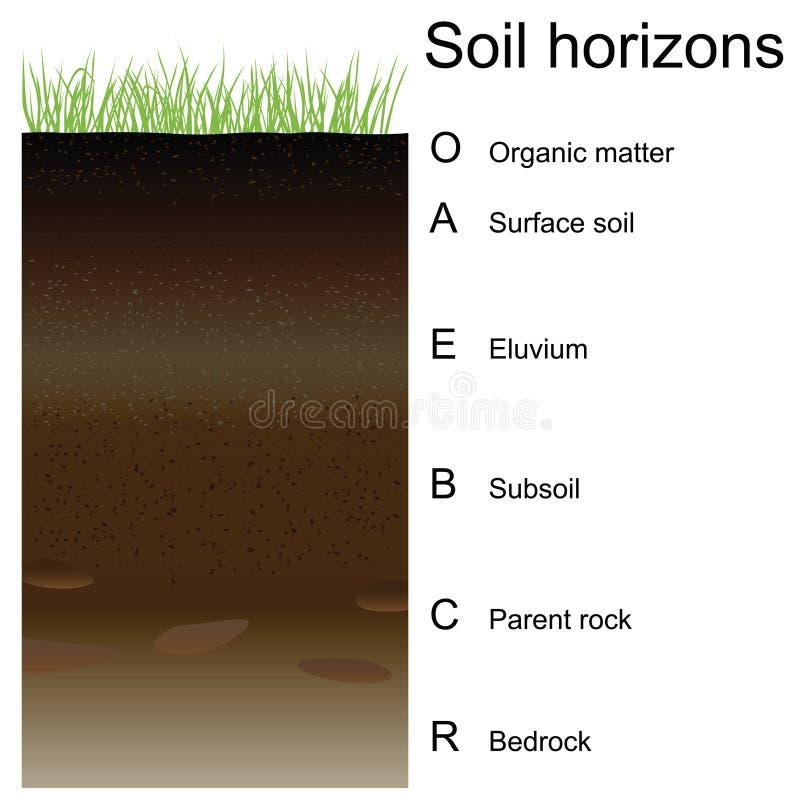 Ejemplo del vector de los horizontes de suelo (capas) ilustración del vector