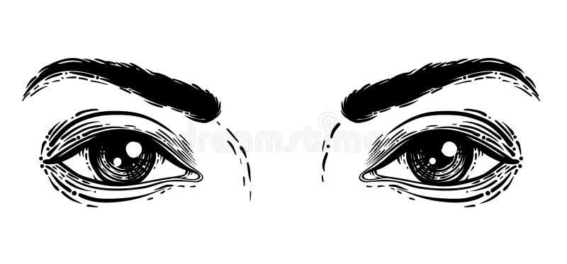 Ejemplo del vector de ojos humanos en grabado Dibujo de la mano en b libre illustration