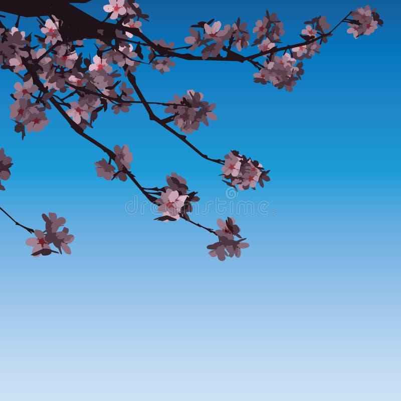 Ejemplo del vector de Sakura Flowers Pink On Branch stock de ilustración