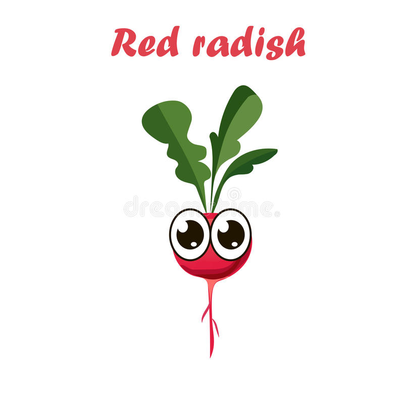 Ejemplo del vector del rábano rojo libre illustration
