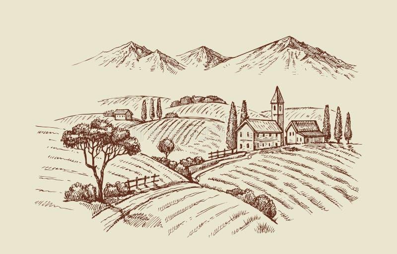 Ejemplo del vector del wineyard libre illustration