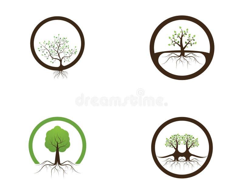 Ejemplo del vector del diseño del logotipo del icono del árbol de la naturaleza ilustración del vector