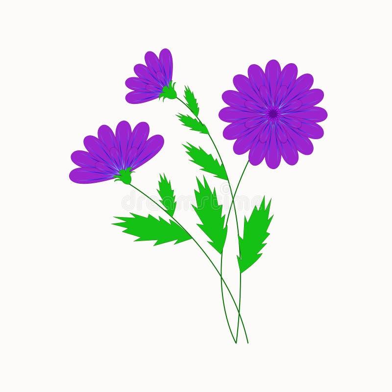Ejemplo del vector, flores púrpuras hermosas imagenes de archivo