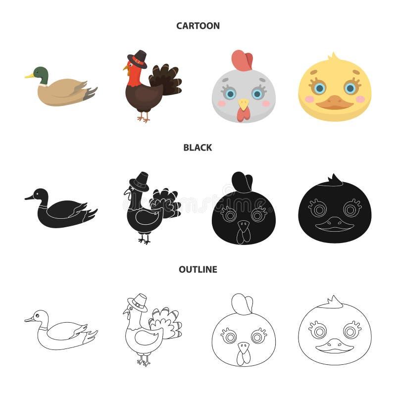 Ejemplo del vector del icono divertido y de las aves de corral Fije de divertido y del s?mbolo com?n de cultivo para la web ilustración del vector