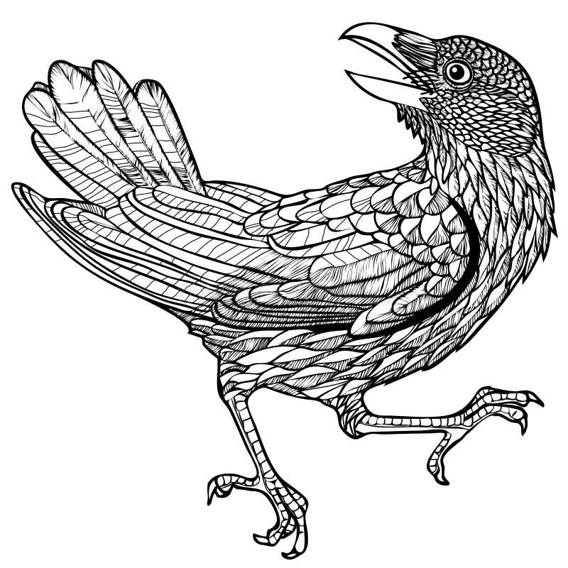 Ejemplo del vector del modelo grabado del pájaro del cuervo blanco y negro ilustración del vector