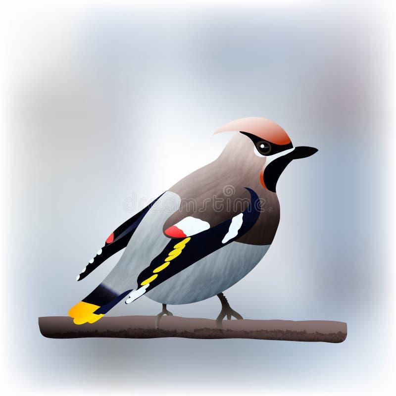 Ejemplo del vector del pájaro del Waxwing stock de ilustración