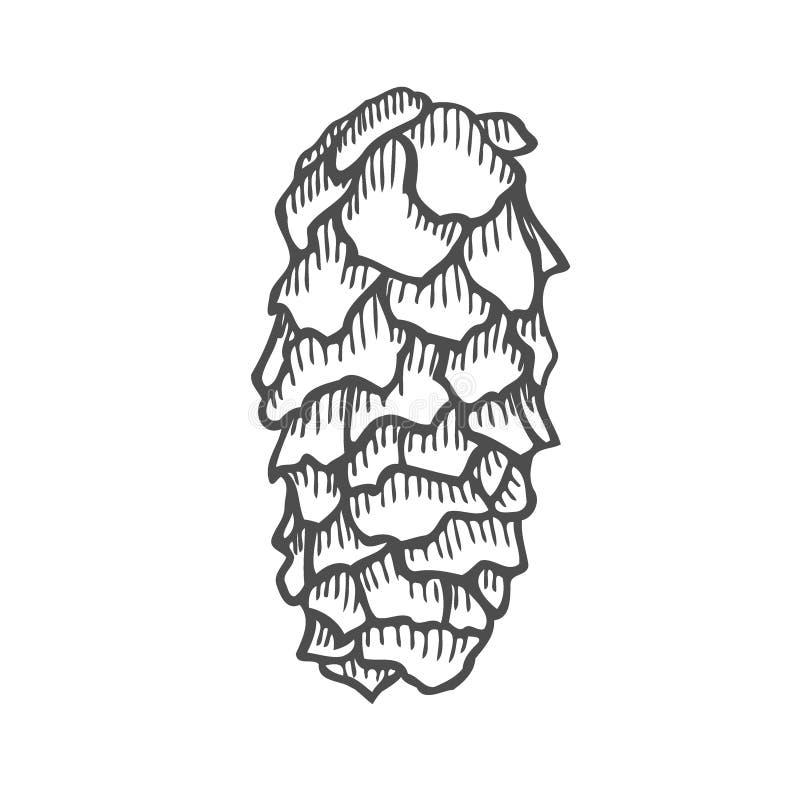 Ejemplo del vector del pinecone stock de ilustración