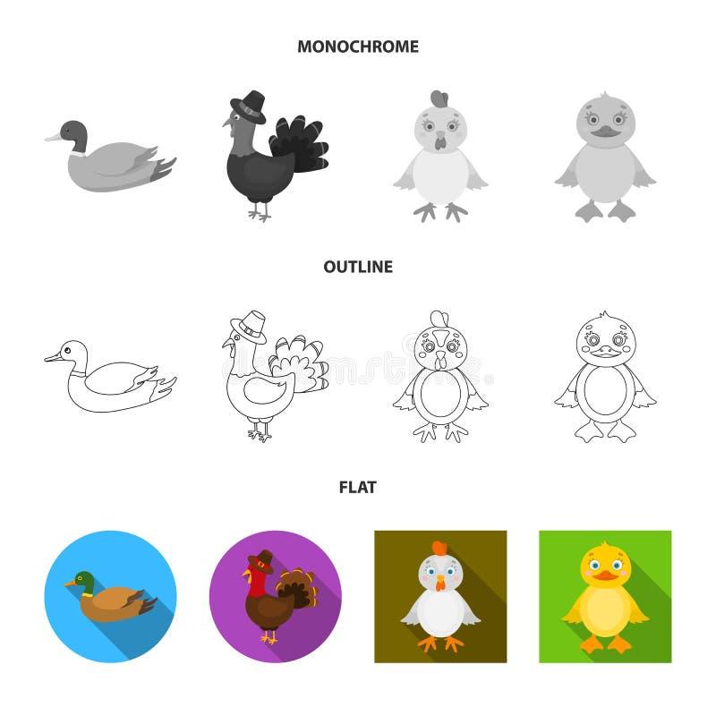 Ejemplo del vector del s?mbolo divertido y de las aves de corral Colecci?n de divertido y de ejemplo com?n del vector de cultivo libre illustration