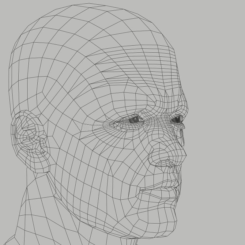 Ejemplo del wireframe del hombre ilustración del vector
