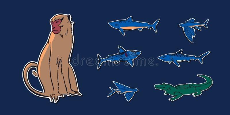 Ejemplo determinado animal del bosquejo exhausto de la mano con el cocodrilo, el mono, el pez volador y los tiburones Etiquetas e ilustración del vector