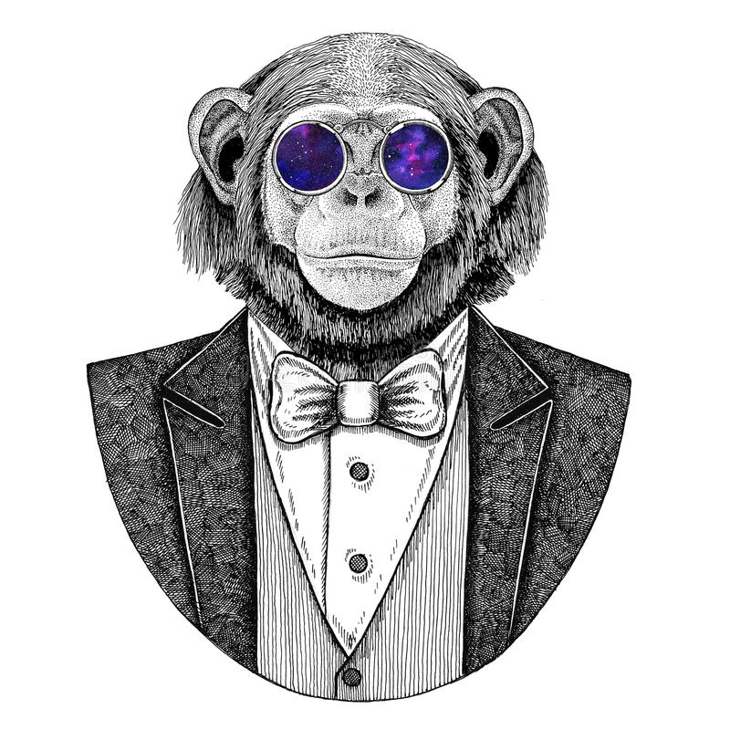 Ejemplo dibujado mano animal del inconformista del mono del chimpancé para el tatuaje, emblema, insignia, logotipo, remiendo, cam stock de ilustración