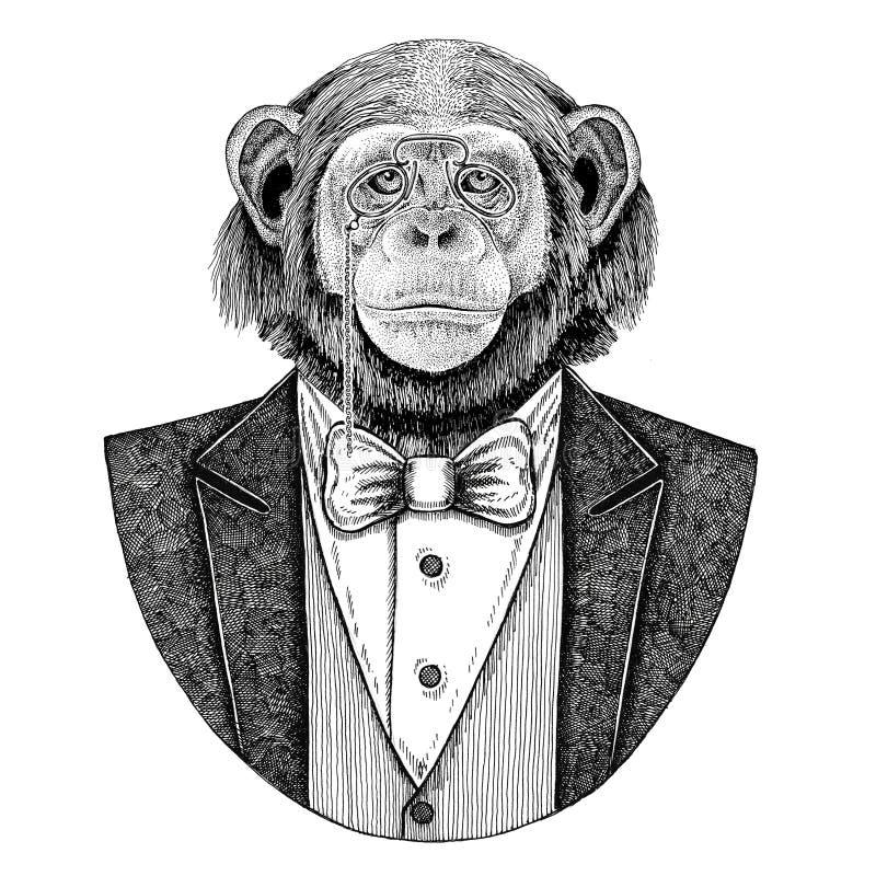 Ejemplo dibujado mano animal del inconformista del mono del chimpancé para el tatuaje, emblema, insignia, logotipo, remiendo, cam libre illustration