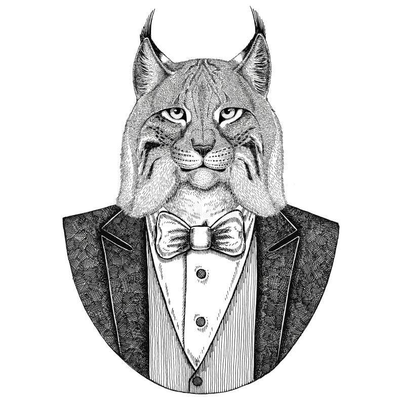 Ejemplo dibujado mano animal salvaje de Bobcat Trot Hipster del lince del gato para el tatuaje, emblema, insignia, logotipo, remi ilustración del vector