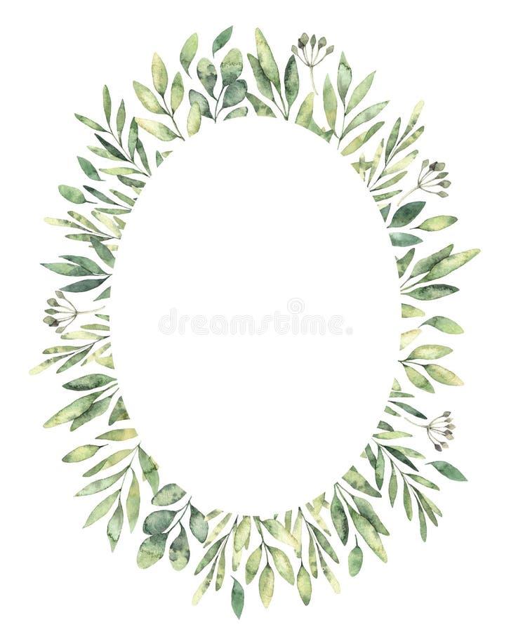 Ejemplo dibujado mano de la acuarela Etiqueta oval botánica del gree libre illustration