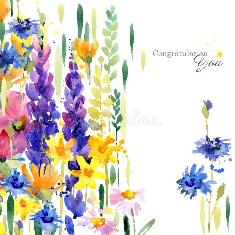Ejemplo dibujado mano de la acuarela de las flores de los campos Tarjeta de felicitación libre illustration