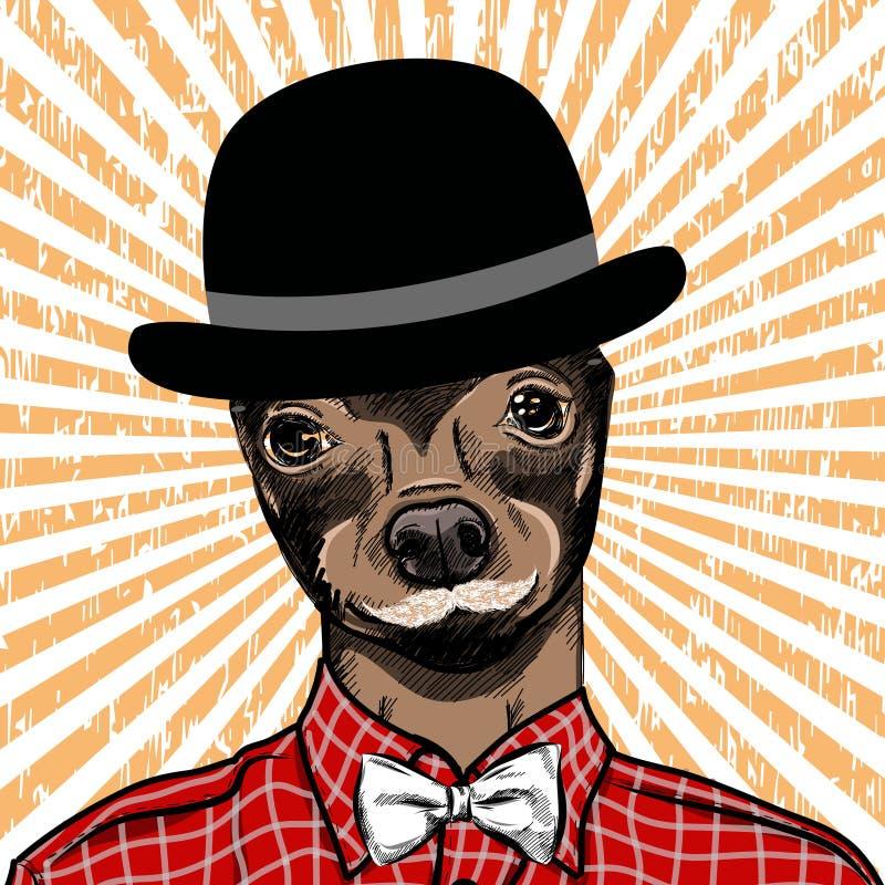 Ejemplo dibujado mano de la moda para arriba vestido del inglés Toy Terrier, en colores Vector ilustración del vector