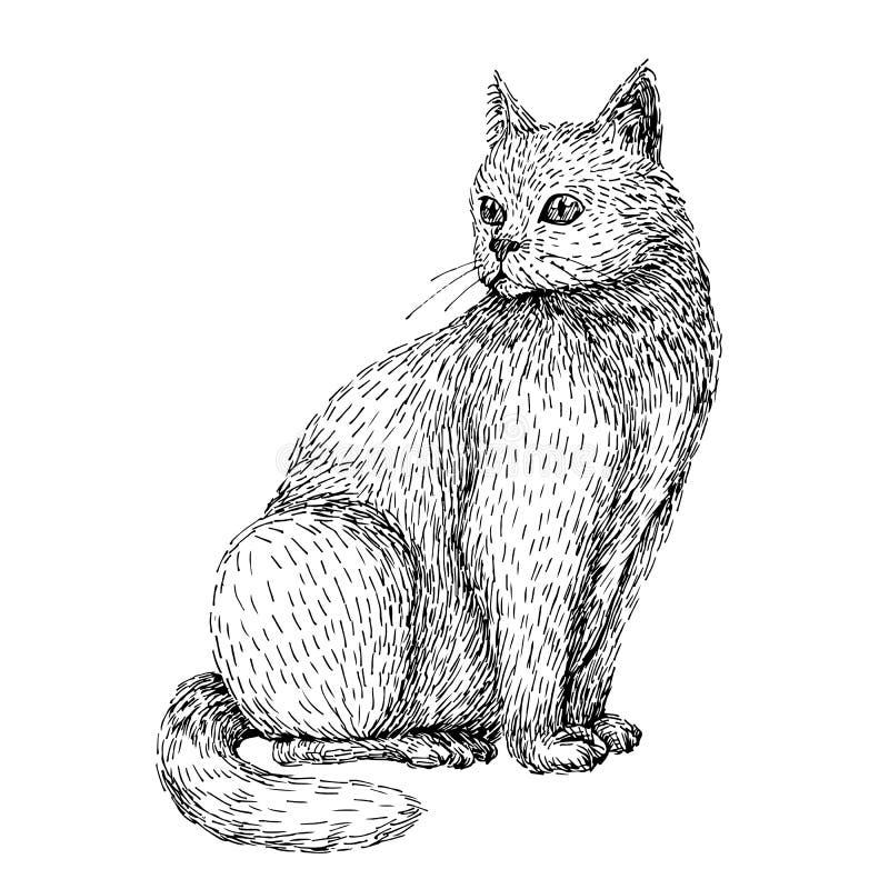 Ejemplo dibujado mano del gato Línea estilo del bosquejo del arte del gato blanco que se sienta Imagen blanco y negro libre illustration