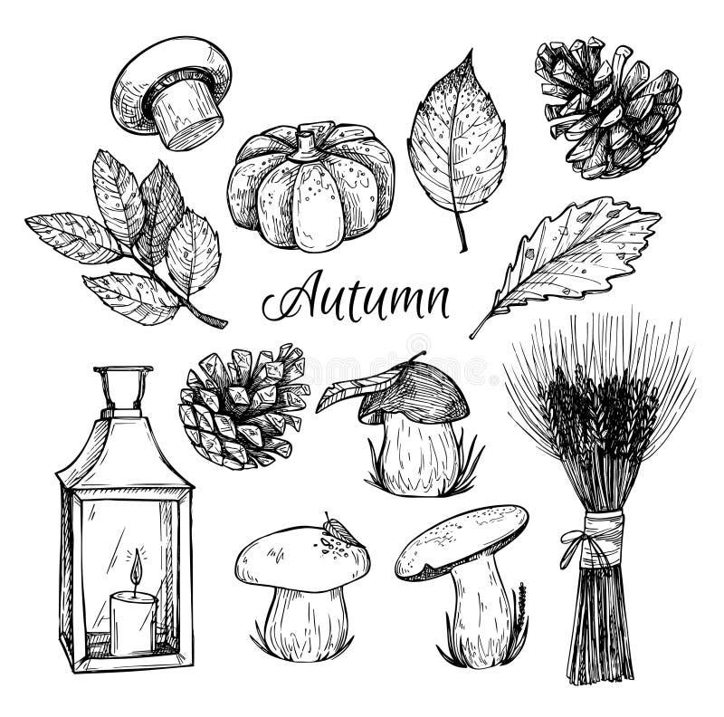 Ejemplo dibujado mano del vector - otoño ilustración del vector