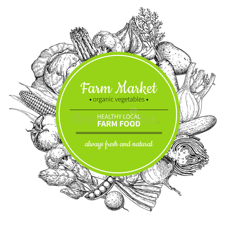 Ejemplo dibujado mano vegetal del marco del vector del vintage Cartel del mercado de la granja ilustración del vector