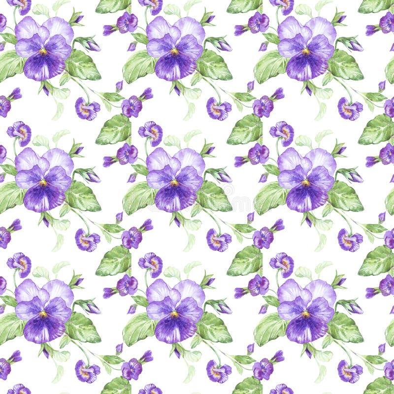 Ejemplo en acuarela de una flor del pensamiento Tarjeta floral con las flores Modelo inconsútil del ejemplo botánico ilustración del vector