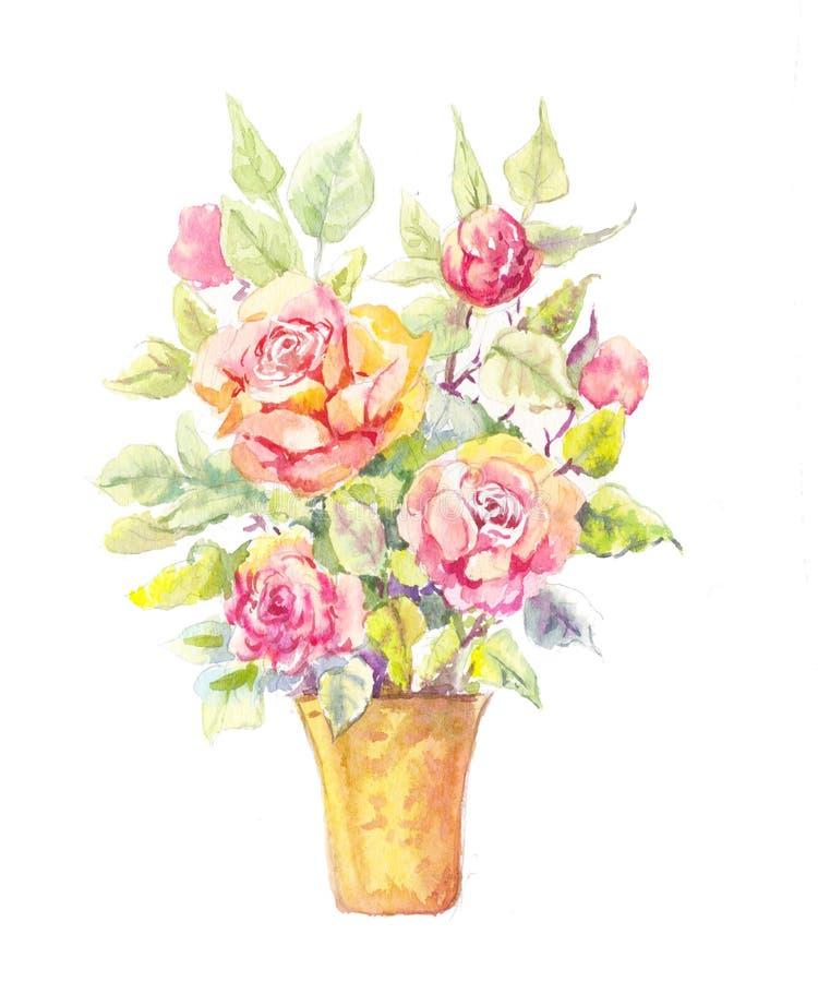Ejemplo en conserva de Rose En conserva subió en acuarela stock de ilustración