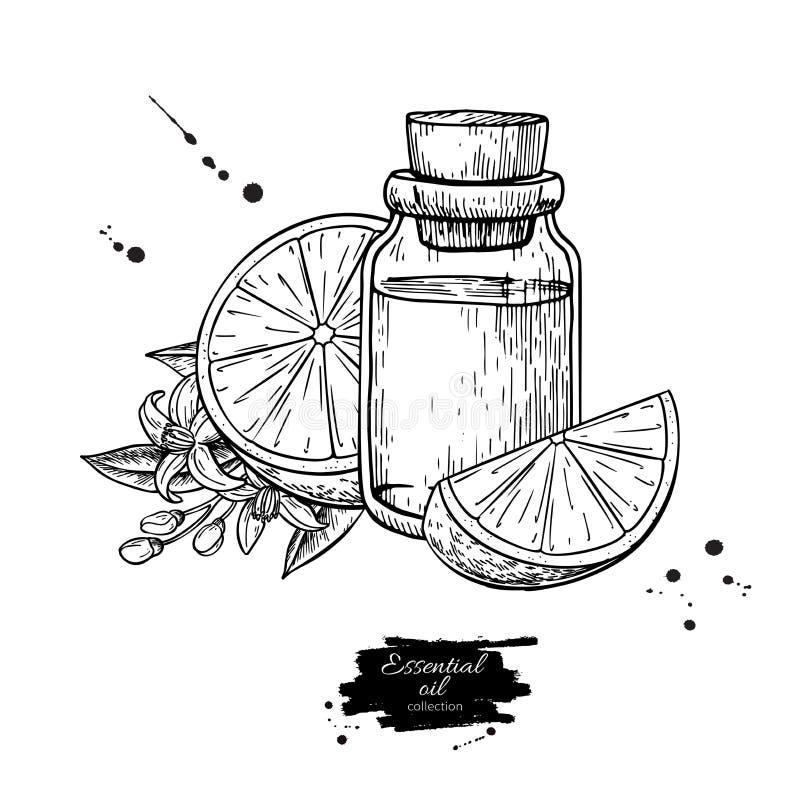 Ejemplo exhausto anaranjado del vector de la mano de la botella y de la fruta de aceite esencial stock de ilustración