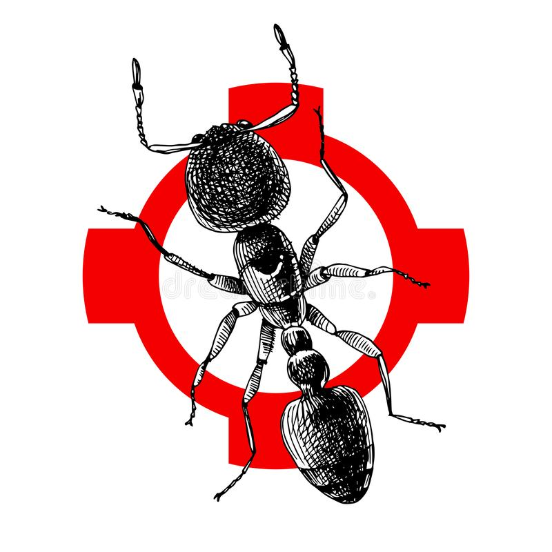 Ejemplo exhausto de la hormiga de la mano en la marca de rayitas cruzadas ilustración del vector