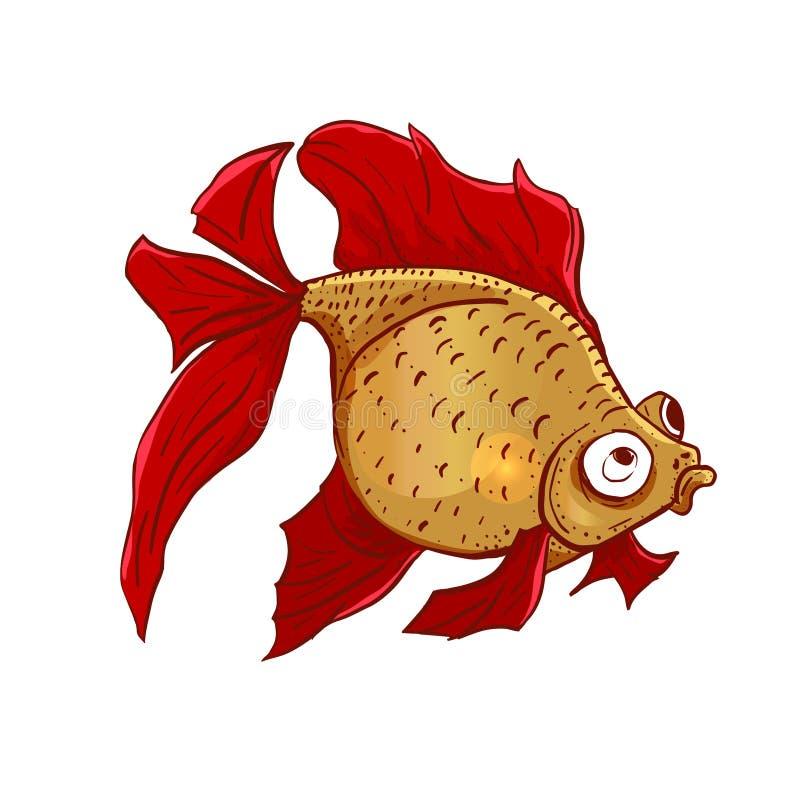 Ejemplo exhausto de la mano colorida linda del vector del pez de colores sobre el fondo blanco Nuestros animales domésticos caser libre illustration