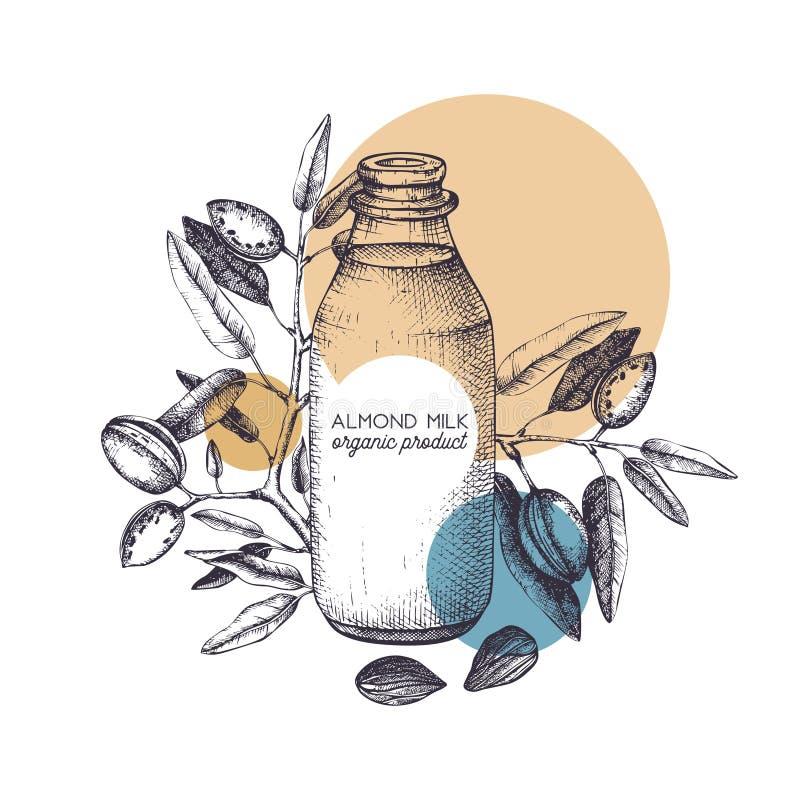 Ejemplo exhausto de la mano de la leche de la almendra Diseño sano del vector de la comida Árbol de almendra con bosquejo de las  libre illustration