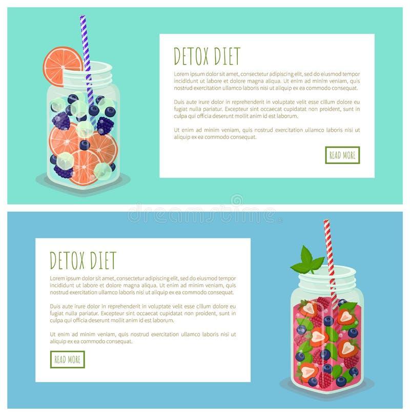 Ejemplo fijado del vector de las páginas de Internet de la dieta del Detox libre illustration