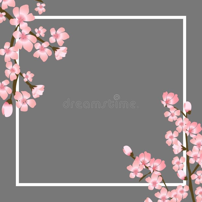 Ejemplo floral abstracto del vector de Sakura Flower Japanese Natural Background stock de ilustración