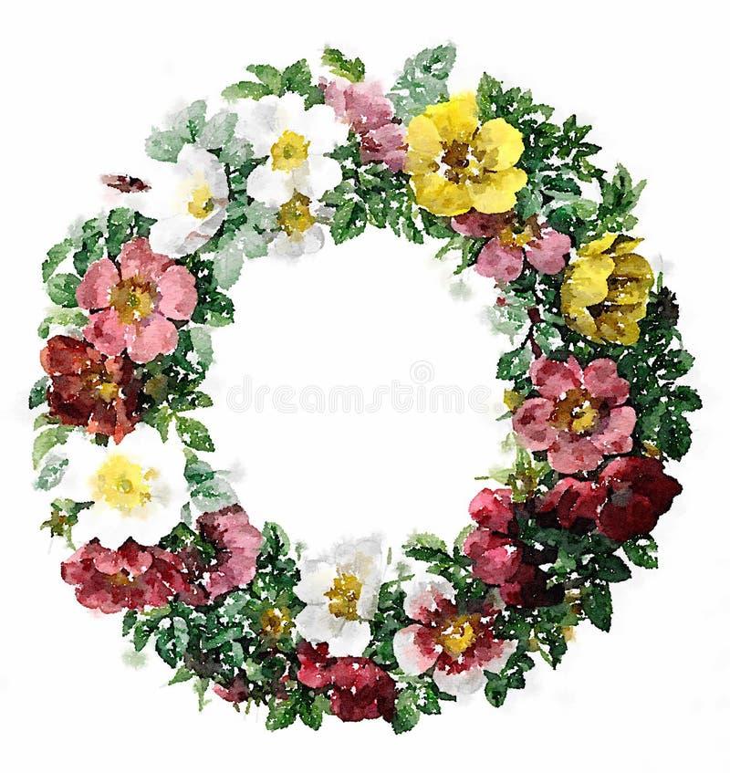 Ejemplo floral de la guirnalda de la acuarela libre illustration