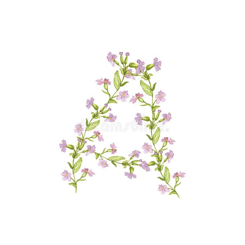 Ejemplo floral del alfabeto de la acuarela La letra A hizo de flores en el fondo blanco ilustración del vector