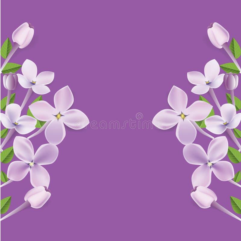 ejemplo floral realista del marco 3d o de la frontera para su disposición del anuncio con el fondo vacío blanco Vector ilustración del vector