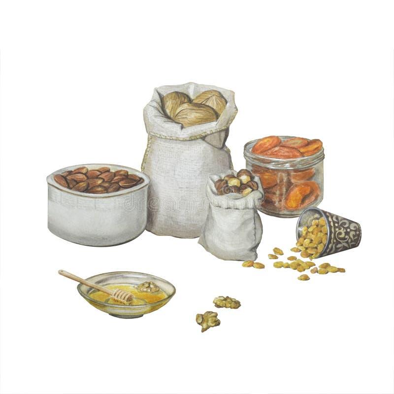 Ejemplo hermoso con las nueces y las frutas secadas en placas y sacos ilustración del vector