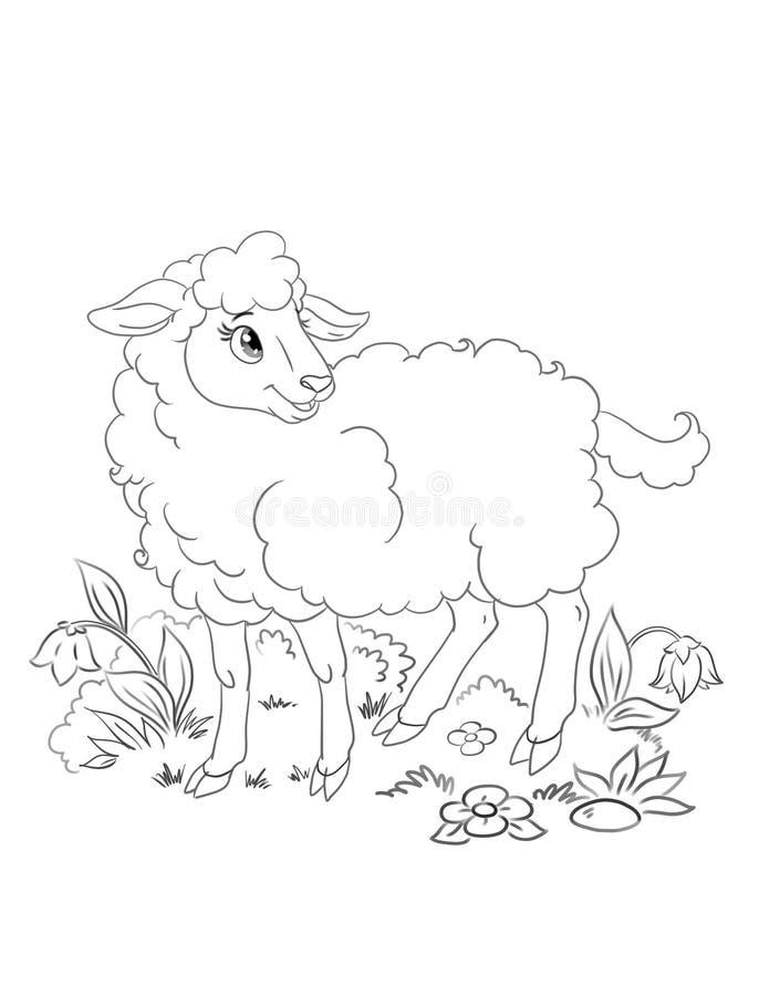 ejemplo hermoso de las ovejas de la historieta para el libro de colorear ilustración del vector